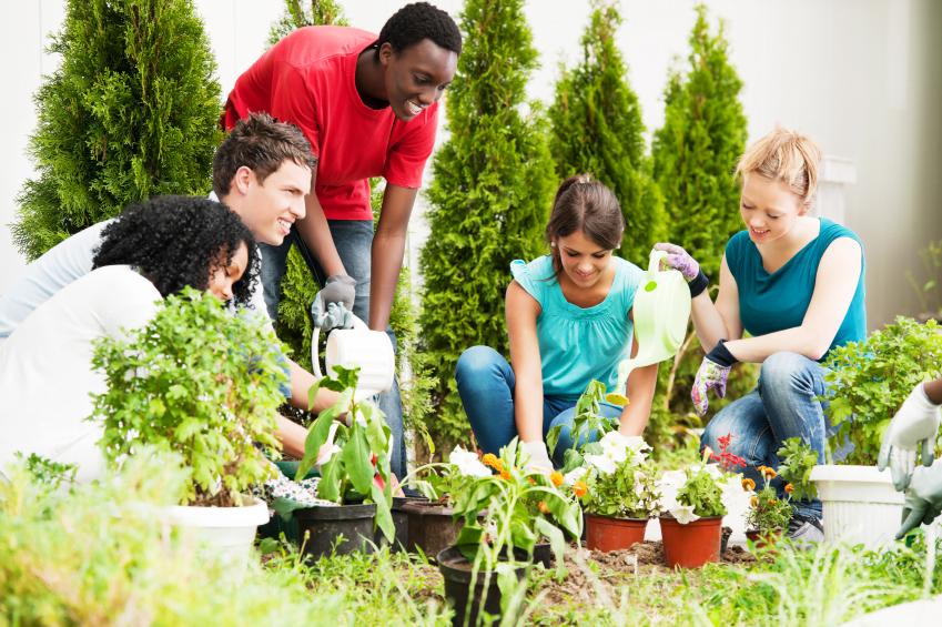 The value of volunteering at university